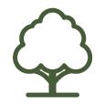 RGB-TreeGrowth-Green-Icon