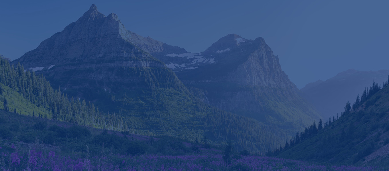 wish_you_were_here_mountains_spring